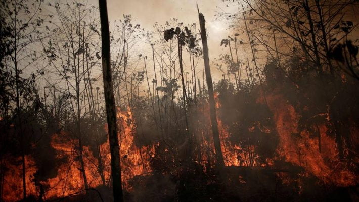 how-your-lifestyle-is-causing-the-amazon-to-burn