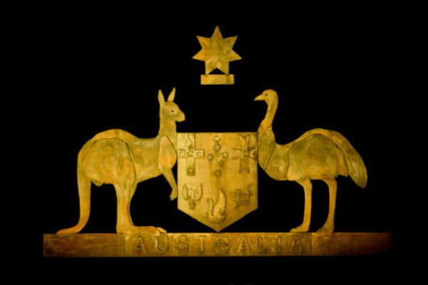 australia-animals